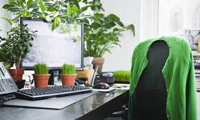 modern office plants. Green Power: Office Plants Make You More Productive Modern