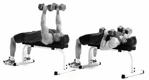 Hammer Grip Incline DB Bench Press  Exercise Videos U0026 Guides Incline Bench Press Grip
