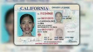 Undocumented Cnn Driver's - Give Licenses Immigrants Opinion