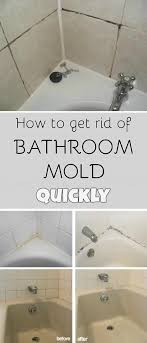 shapely bathroom m quickly in how to get rid in black mold in bathroom