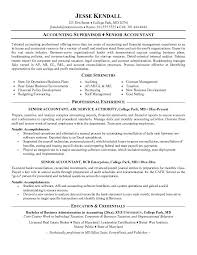 Resume Examples For Accounting Supervisor With Core Strength And