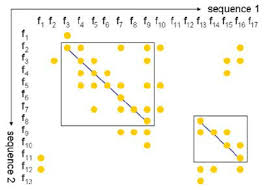 dot plot example an example of the dot plot two sequences are locally aligned where