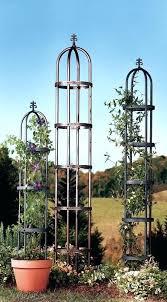 garden obelisk trellis. Garden Obelisk Trellis Metal Steel Black . A
