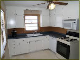 Painted Kitchen Cupboard Kitchen Cupboards Ideas Home Design Ideas
