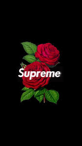 supreme rose and wallpaper image