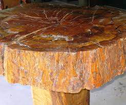 ... Large-size of Mesmerizing Q Tree Trunk Coffee Table Edmonton Trunk  Coffee Table Ebay Trunk ...
