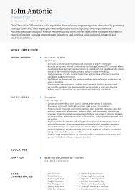 cv or resume samples free real professional resume samples visualcv