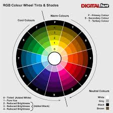 Use Of Colours. 12 Step Colour Wheel