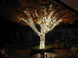 outdoor tree lighting ideas. Hanging Lights On An Outdoor Tree Intended For Well Liked Backyard Lighting Ideas \u2013 Homedesignlatest H