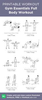 Gym Essentials Full Body Workout Illustrated Exercise Plan