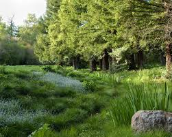 Gorgeous Natural Landscape Design Natural Landscape Ideas Pictures Remodel  And Decor