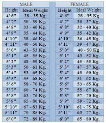 Google Height And Weight Chart Height Weight Chart