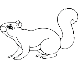 Cute Squirrel Coloring Pages Squirrel Coloring Page Coloring Pages