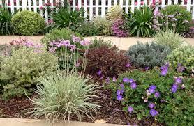 Small Picture Drought Tolerant Garden Design Photos On Fancy Home Interior