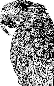 Belle Coloriage Perroquet Fille Rio