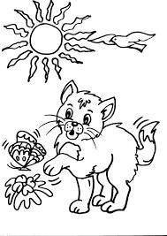 Gattino Che Gioca Con Farfalla Disegno Da Colorare Disegni Da