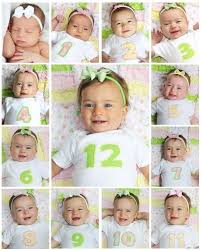 12 month baby photo collage bas first birthday collage take a picture each month and combine
