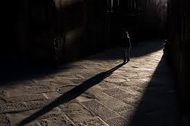 Αποτέλεσμα εικόνας για jung shadow side