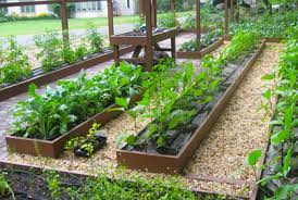 Small Picture Enchanting Organic Garden Design On Interior Home Inspiration with