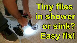 how to get rid of drain flies in shower