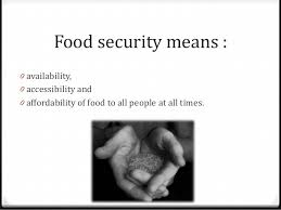 food security in  food security