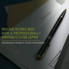 Professional Entry Level Resume Consultant Resume Pundits