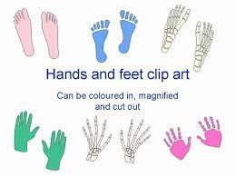 Hand Feet Template Classroom Www Picsbud Com