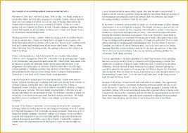Narrative Essay Example College How To Start A Personal Narrative Sample College Level
