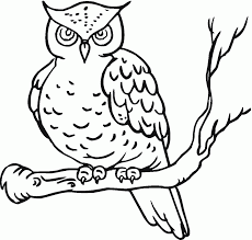 Owl Coloring Pages Printable Free Printable