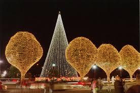 christmas tree lighting ideas. Images Of Christmas Tree Lights And Outdoor Decorations Photo Album Home Design Ideas Lighting I