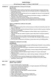 political campaign manager resume director of advertising and marketinge examples political campaign