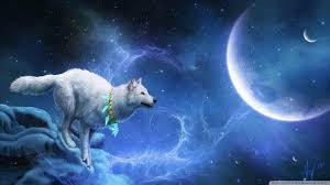 blue wolf background. Delighful Wolf Animals For U003e Blue Wolf Background Inside