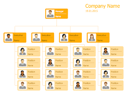 Company Structure Diagram Template Business Structure