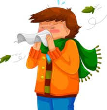 Image result for winter sneezes