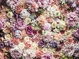 flowers for the wedding. millennial pink flowers you need for your wedding the e