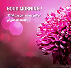 Pleasant Good Morning Quotes Best Of 24 Good Morning Joyful Wishes