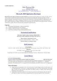 Standard Format For Resume Resume Standard Format Resume Samples 20
