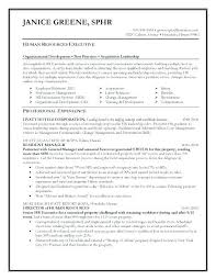 Transportation Resume Examples Transportation Operations Manager Resume Examples Unique Photography
