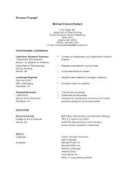 New Resume Writing Format Pdf Baskanai Modern Resume Format