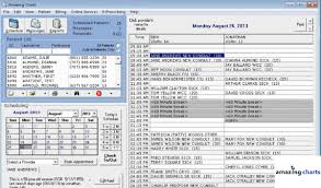 Charting Programs For Nursing List Of Top 30 Emr Software Companies For Electronic Medical