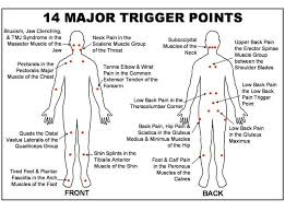 Free Trigger Point Chart Trigger Point Chart Free Download Google Search Medical