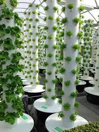 vertical aeroponic tower garden designrulz com design
