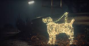 Animals In Christmas Lights Peta Uses Glittering Fairy Lights To Remind People That