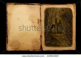 old book in vine style