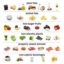 Food Chart Carbohydrates Fats Protein How To Start A Low Carb Diet Shopping Lists Recipes Plans