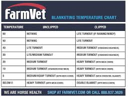 Top 5 Tips To Prepare Your Horse For The Cold Weather Equo