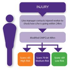 Psychological Injury Management Pim