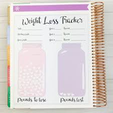 Weight Loss Tracking Spreadsheet Kawaii Weight Loss Tracker Sticker Jumbo With Sheet Of Etsy