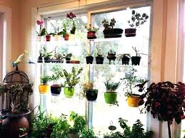window herb garden indoor hanging herb garden window hanging herb garden hanging planter herbs hanging indoor