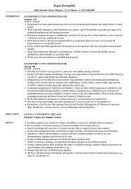 Salesforcecom Administrator Resume Samples Velvet Jobs